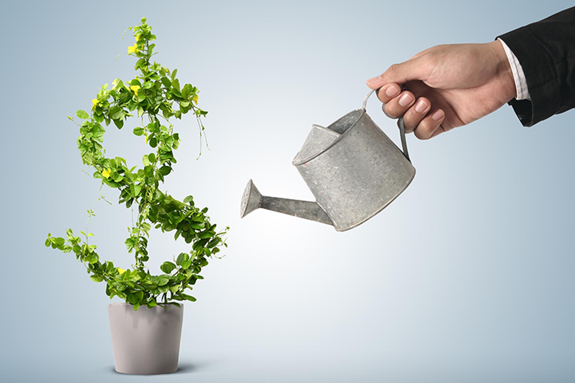 Promessa de rentabilidade extraordinária? Desconfie!